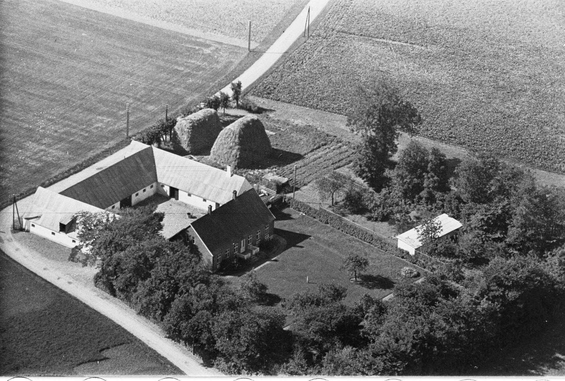 Vejvedgaard 1949 Svingomgården
