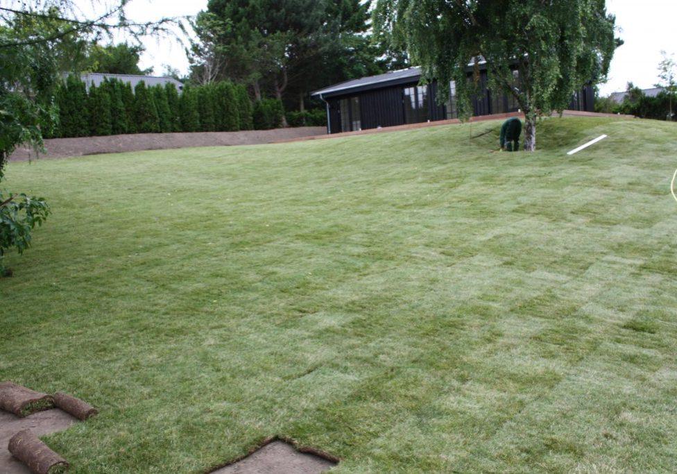 Tisvildeleje, færdiggræs udlægges og vanding (37)